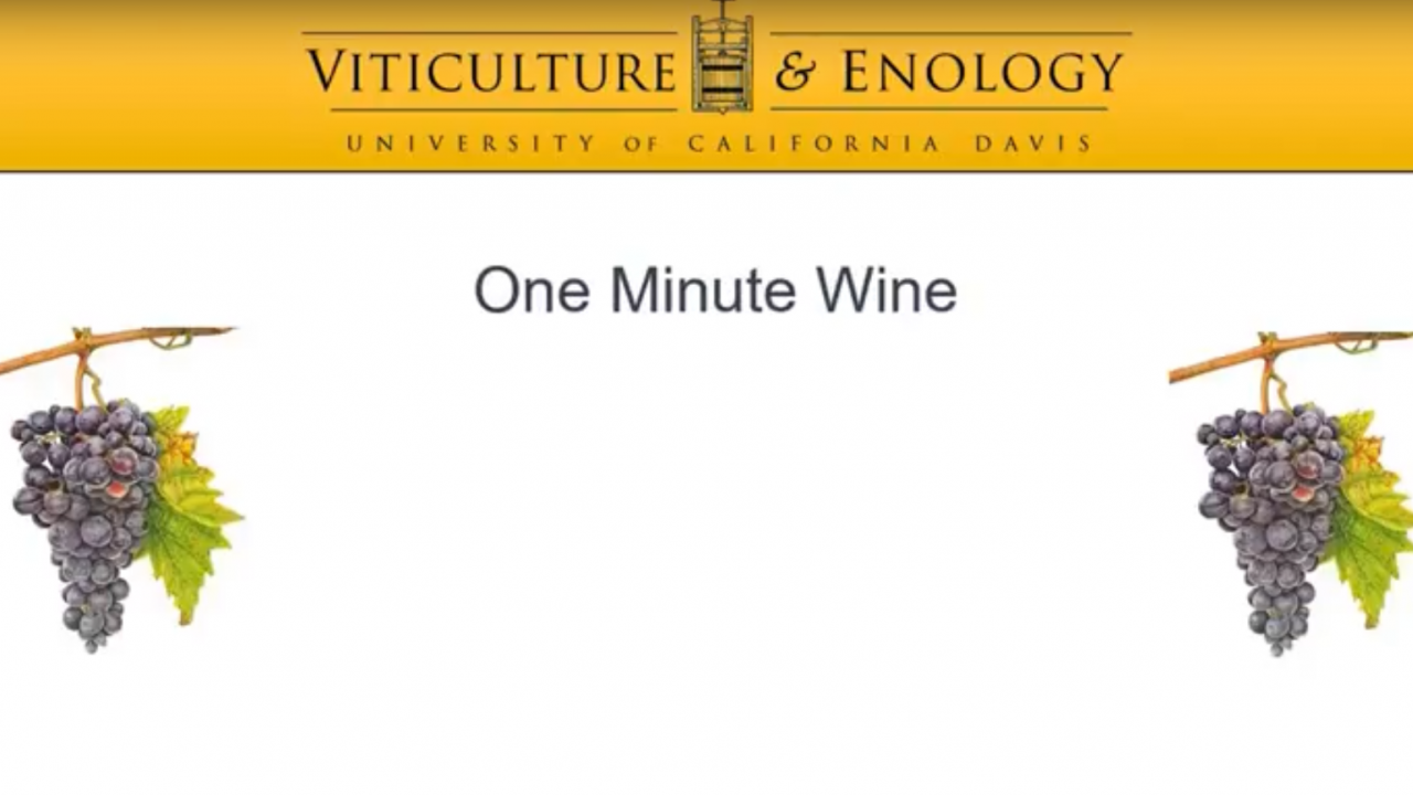 One Minute Wine Poster